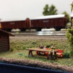 DMV Rail 2015 (5)