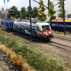 DMV Rail 2015 (31)